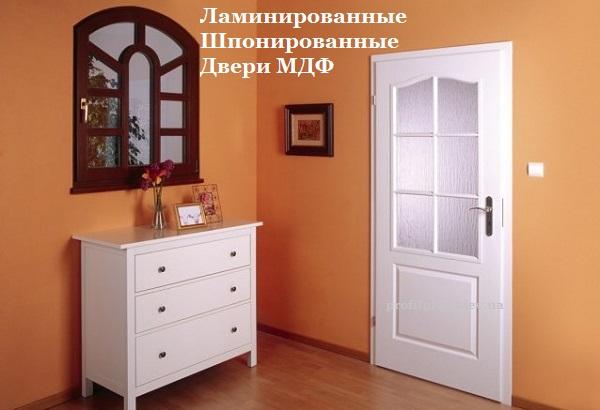 Двери Омис Киев